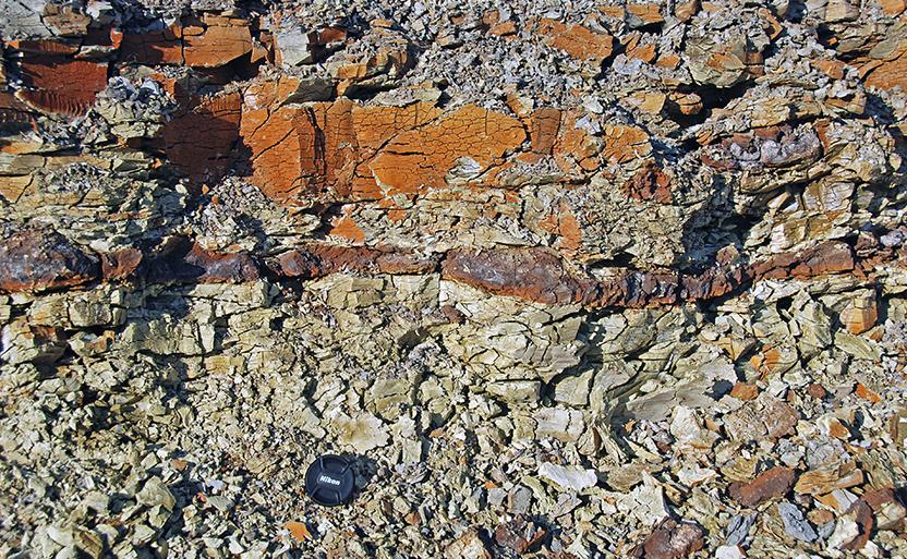 钻井泥浆用膨润土